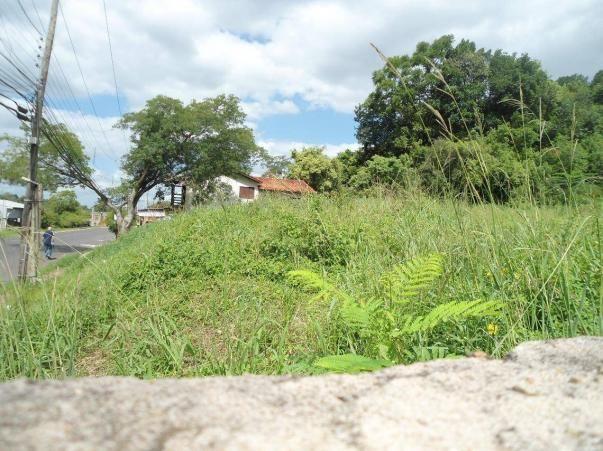 Terreno residencial à venda, rondônia, novo hamburgo. - Foto 2