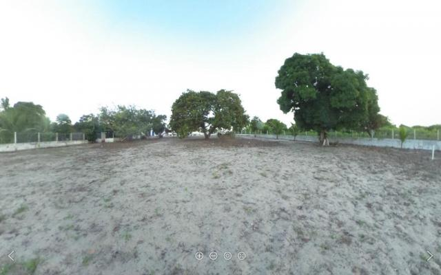 Chácara rural à venda, Taipu a cem metros da Br 406. - Foto 3
