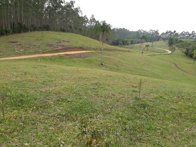 Linda área com 10 hectares a venda em Tijucas SC!!!