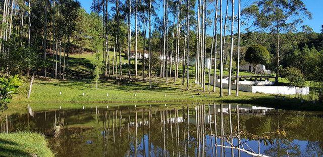 VENDO SÍTIO  8 ALQUEIRES / IBIÚNA  - Foto 12