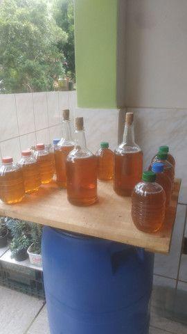 Mel de abelha puro 700 gramas - Foto 5