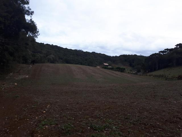 Chacara com 36.000m² juruqui - Foto 12