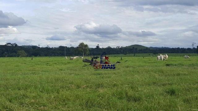 Fazenda Localizada na cidade de Buritis-RO - Foto 17