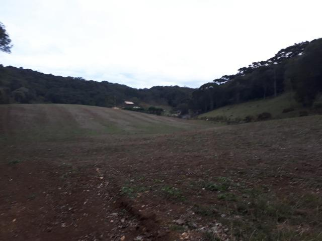 Chacara com 36.000m² juruqui - Foto 2