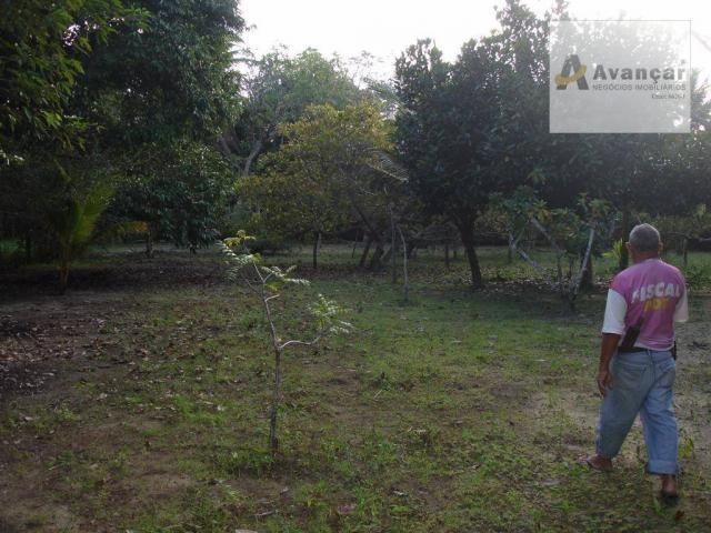 Chácara com 3 dormitórios à venda, 20000 m² por R$ 500.000,00 - Carne de Vaca - Goiana/PE - Foto 9