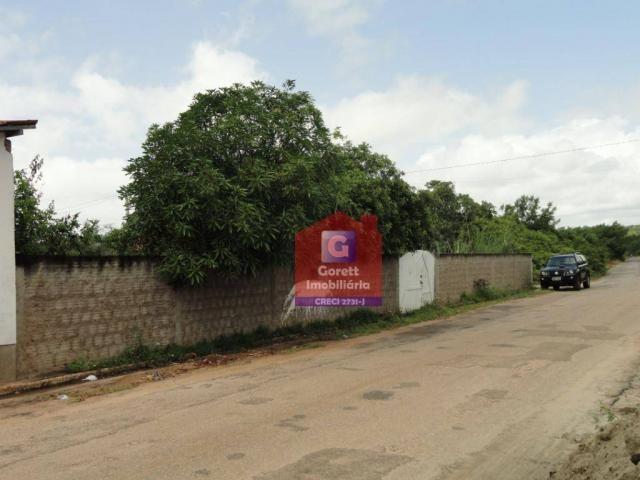Terreno rural à venda, Genipabu, Extremoz. V0696 - Foto 3