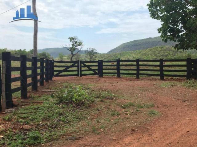 Fazenda 1850 has no município de Nobres-MT, na região de Bom Jardim; - Foto 19