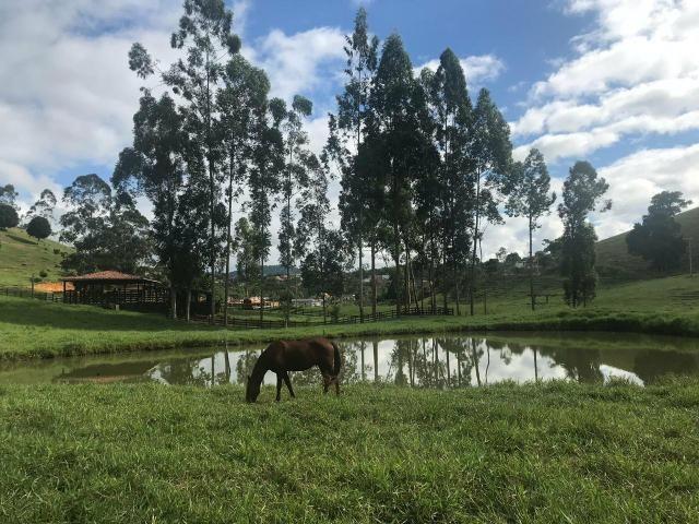 Vendo fazenda em Jiquiriçá ba - Foto 6