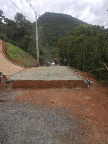 Terreno à venda, 740 m² por R$ 55.000 - Serrinha - Teresópolis/RJ - Foto 11