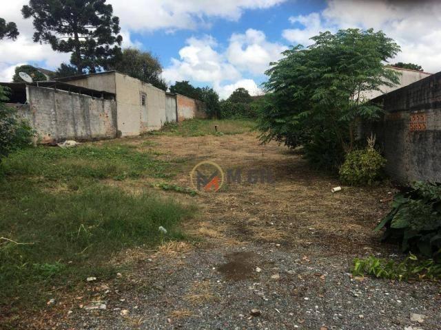 Terreno para locação comercial, Boqueirão - Curitiba - Foto 6