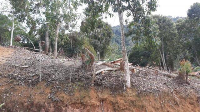 Terreno à venda, 1575 m² por R$ 150.000 - Fazenda Boa Fé - Teresópolis/RJ - Foto 6