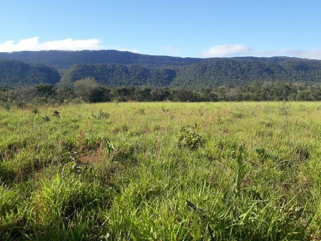 Fazenda com dupla aptidão em Rosário Oeste Mato Grosso - Foto 18