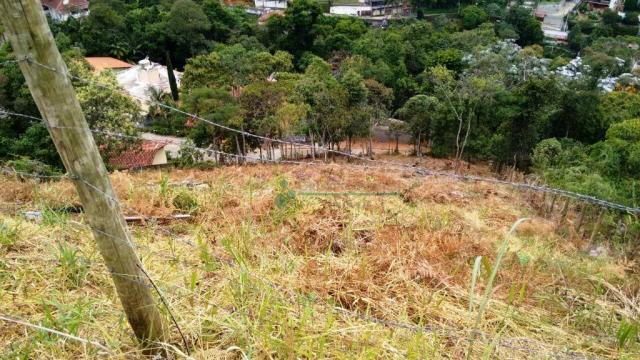Terreno residencial à venda, Quinta da Barra, Teresópolis. - Foto 4