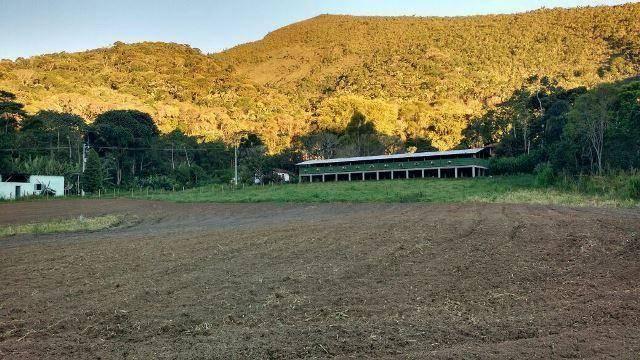 Fazenda rural à venda, Serra do Capim, Teresópolis. - Foto 15