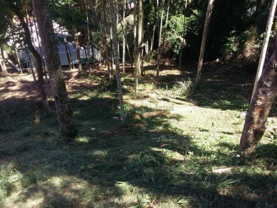 Terreno residencial à venda, Vargem Grande, Teresópolis. - Foto 5
