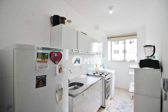 Apartamento com 2 dormitórios à venda, 42 m² por r$ 159.600 - operário - novo hamburgo/rs - Foto 5