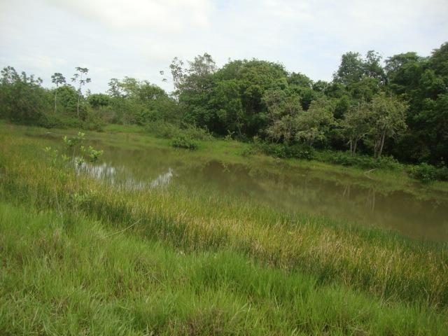 16 Alqueires Região do Calcário,Tangará da Serra- MT, troca-se por imóveis em Tangará