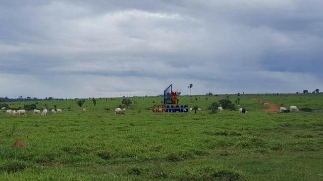 Fazenda Localizada na cidade de Buritis-RO - Foto 10