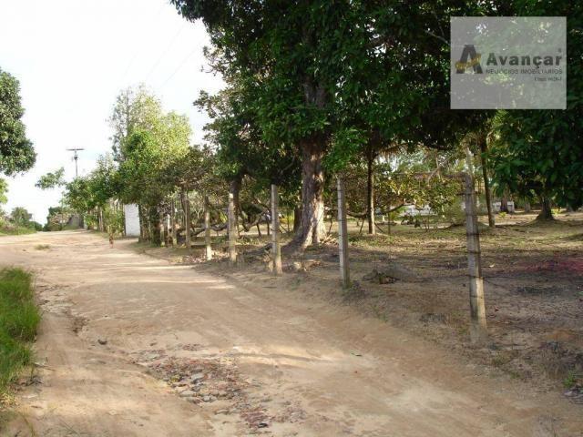 Chácara com 3 dormitórios à venda, 20000 m² por R$ 500.000,00 - Carne de Vaca - Goiana/PE - Foto 20