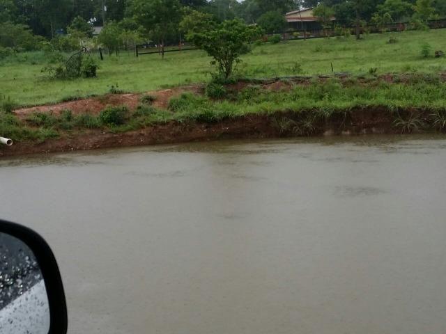 Sitio 120 hectares em Livramento - Foto 4