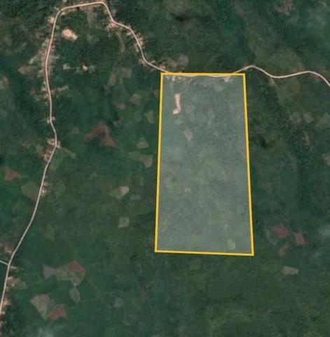 Área no interior do MARANHÃO 1 hectare