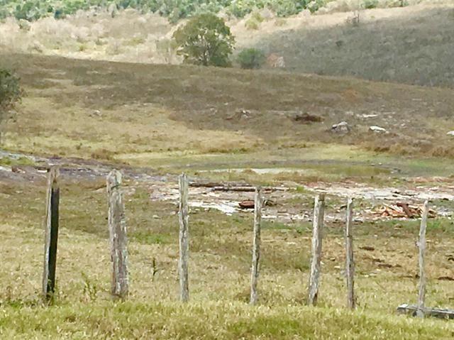 Fazenda em Boa Nova BAHIA com 167he - Foto 3
