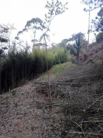 Terreno residencial à venda, Fazenda Boa Fé, Teresópolis - TE0063. - Foto 3