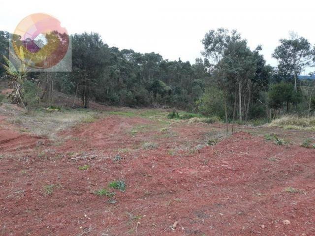 Chácara  à venda, 23000 m² por R$ 180.000 - Palmerinha - Campina Grande do Sul/PR - Foto 16
