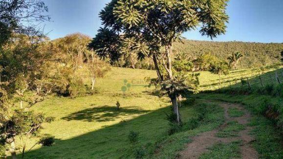Fazenda rural à venda, Serra do Capim, Teresópolis. - Foto 6