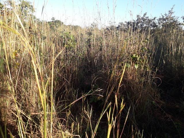 Chácara em Acorizal 38,2 hectares - Foto 20