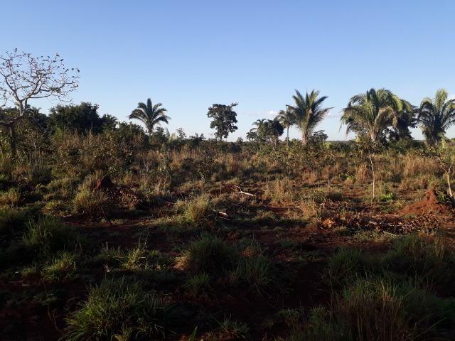 Chácara em Acorizal 38,2 hectares - Foto 16