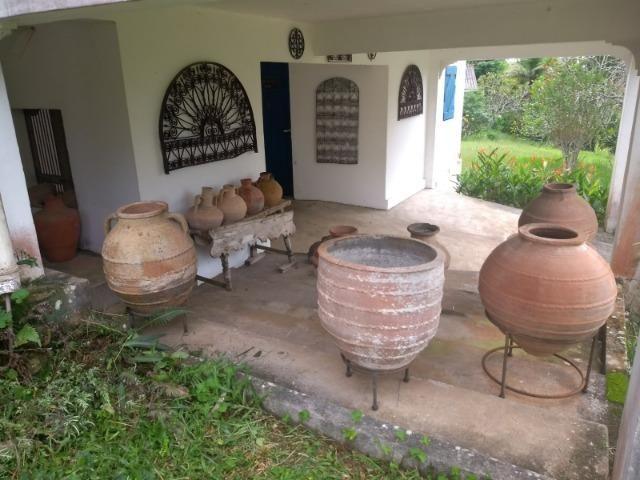 Linda fazenda com nascente própria em Jaconé, Maricá - Foto 6