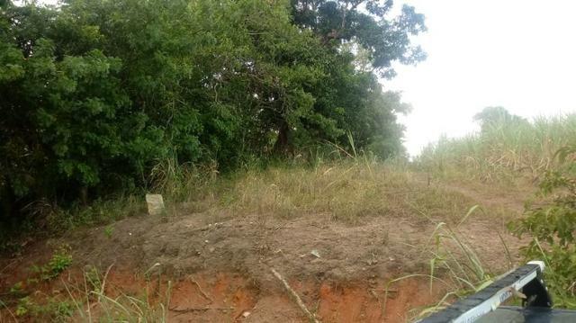Ótima propriedade de 2 hectares, em Chã de Alegria-PE. R$ 140 mil - Foto 5