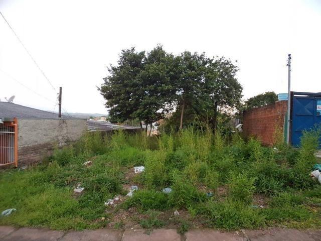 Terreno residencial à venda, rondônia, novo hamburgo. - Foto 3