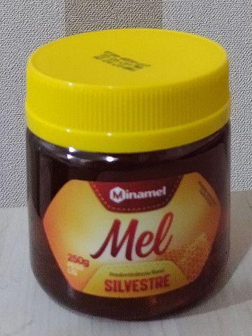 kit Jun:1 scoby Jun + 100g de chá verde Importado + 250g de mel Silvestre - Foto 4