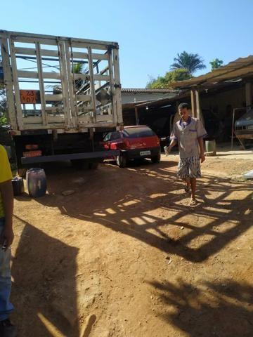 Lote no Jardim Liberdade- Senador Canedo - Foto 4