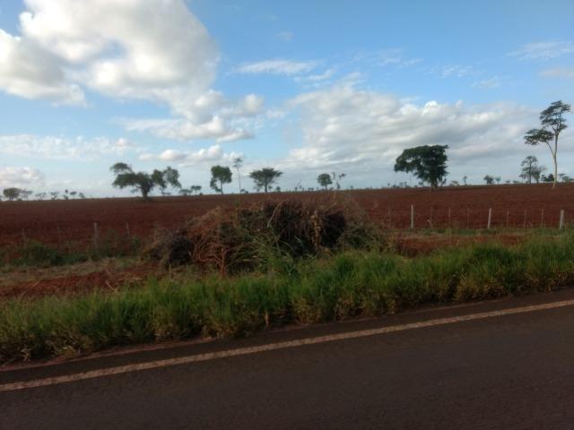 Alugo Fazenda p Arrendamento no Ms 1000 há - Foto 9