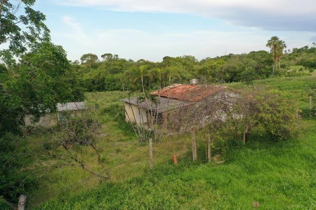 Fazenda no município de faina-GO! 24 Alqueires! - Foto 7