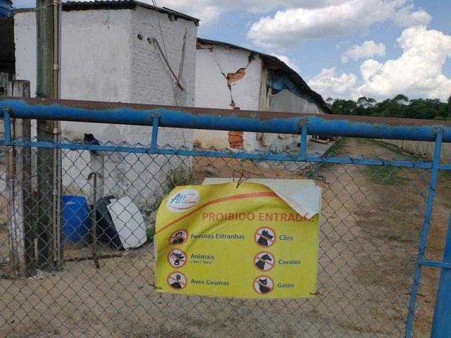 Sítio, Chácara a Venda com 12.100 m², 2 granjas com 13 mil aves cada em Porangaba - SP - Foto 11
