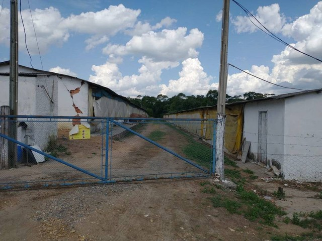 Sítio, Chácara a Venda com 12.100 m², 2 granjas com 13 mil aves cada em Porangaba - SP - Foto 6
