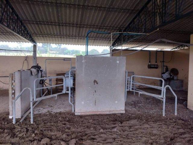 Sítio, Chácara, Fazenda a Venda com 72.600 m², 3 Alqueires, Leiteria, Casa como 2 quartos - Foto 2