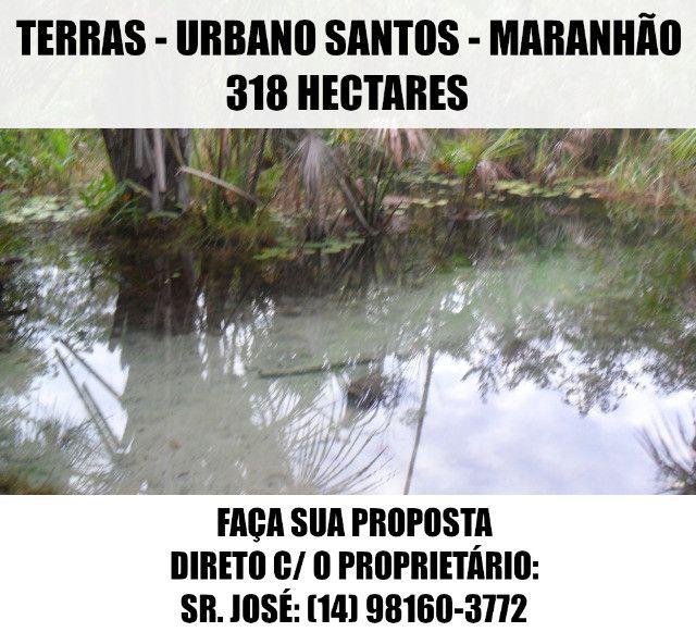 Terras / Fazenda - Urbano Santos (MA) - 318 Ha - Faça Sua Proposta - Foto 12