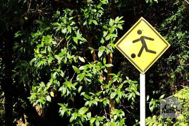 Loteamento/condomínio à venda em Bosque da ribeira, Nova lima cod:246245 - Foto 5