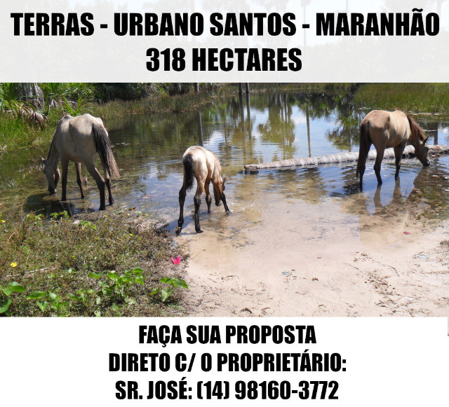 Terras / Fazenda - Urbano Santos (MA) - 318 Ha - Faça Sua Proposta