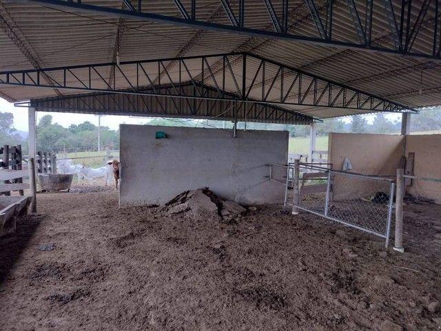 Sítio, Chácara, Fazenda a Venda com 72.600 m², 3 Alqueires, Leiteria, Casa como 2 quartos - Foto 6