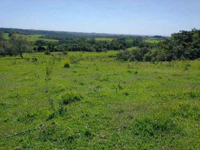 Terreno, Sítio, Chácara a Venda com 60500 m² 2,5 Alqueres em Bairro Rural - Porangaba - SP - Foto 5