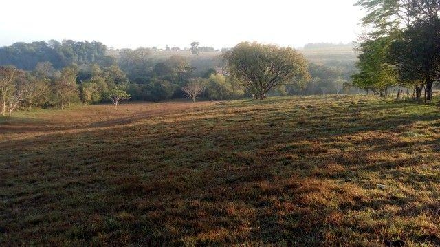 Fazenda, Sítio, Chácara a Venda em Porangaba, Torre de Pedra, Bofete, Área 178.838m² (7,39 - Foto 5
