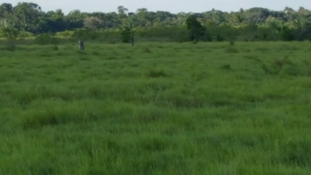 Fazenda de 4250 hectares no Cantá, na Serra da lua, ler descrição do anuncio - Foto 2
