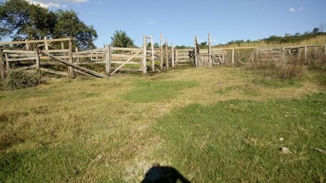 Fazenda no município de faina-GO! 24 Alqueires! - Foto 14