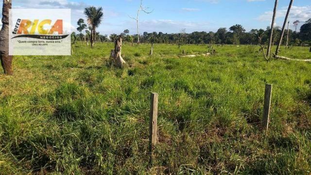 Fazenda com 140 Hectares em Candeias do Jamari/RO à venda, a 14 km da cidade - Foto 9